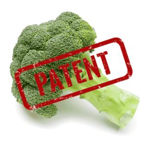 EP1069819 Brokkoli-Patent der Firma Plant Bioscience. Grundsatzentscheidungen am EPA.