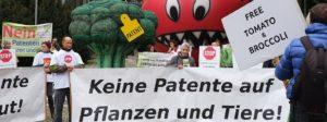"""Demonstration """"Keine Patente auf Pflanzen und Tiere"""" mit Brokkoli und Tomate"""