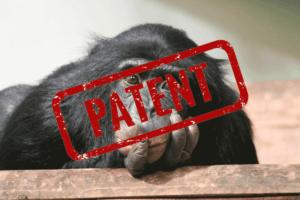 EP1409646 Patent auf Schimpansen für die Firma Altor. Einspruch!